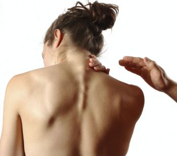 Hayashida & Associates Physical Therapy: My Neck Hurts… So Why is My ...  Neck