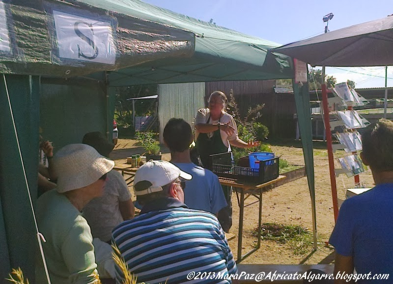 Mediterranean Garden Fair 2013-5