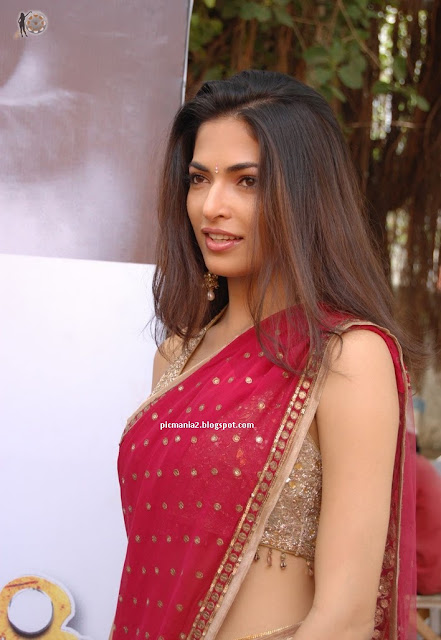 parvathy omanakuttan in saree hot cleavage show