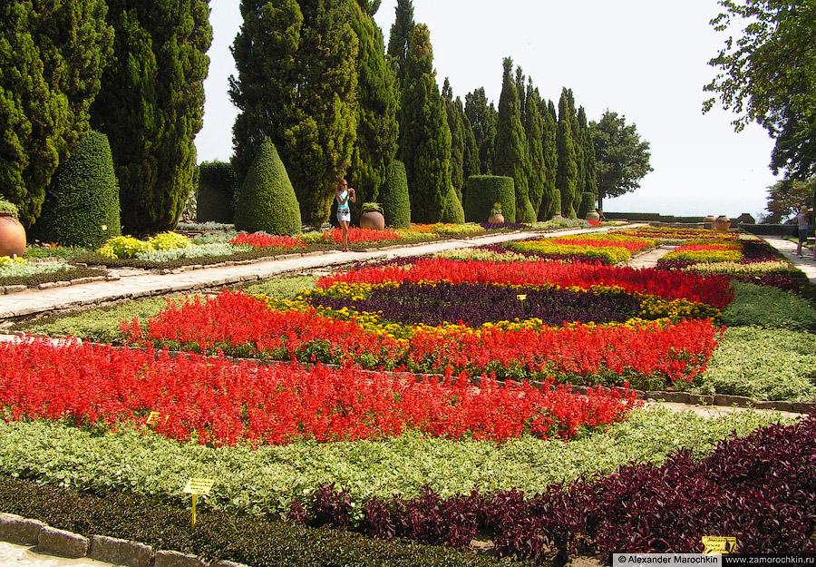 Цветы в ботаническом саду Балчика