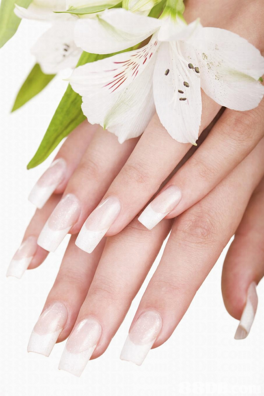 Best white stiletto nail designs