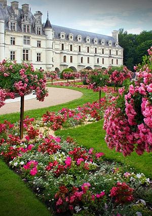 Chateau Chenonceau,France