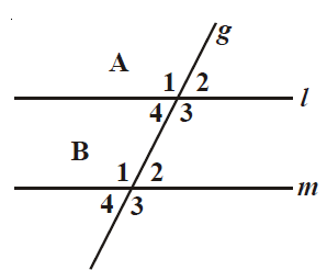 TTS Matematika Kelas 7