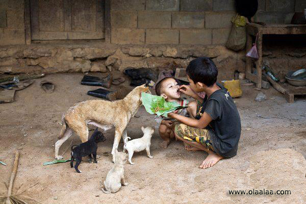 heart touching pictures in real life
