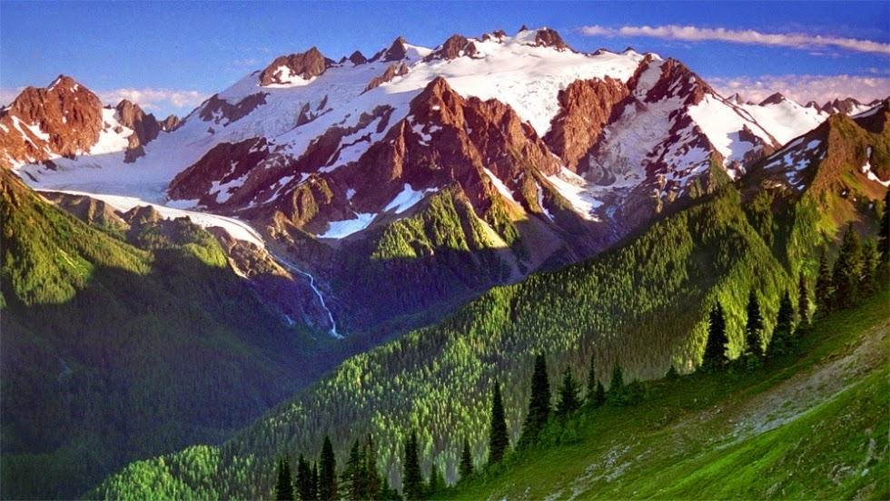 Vast Wilderness in Olympic National Park, Washington, USA