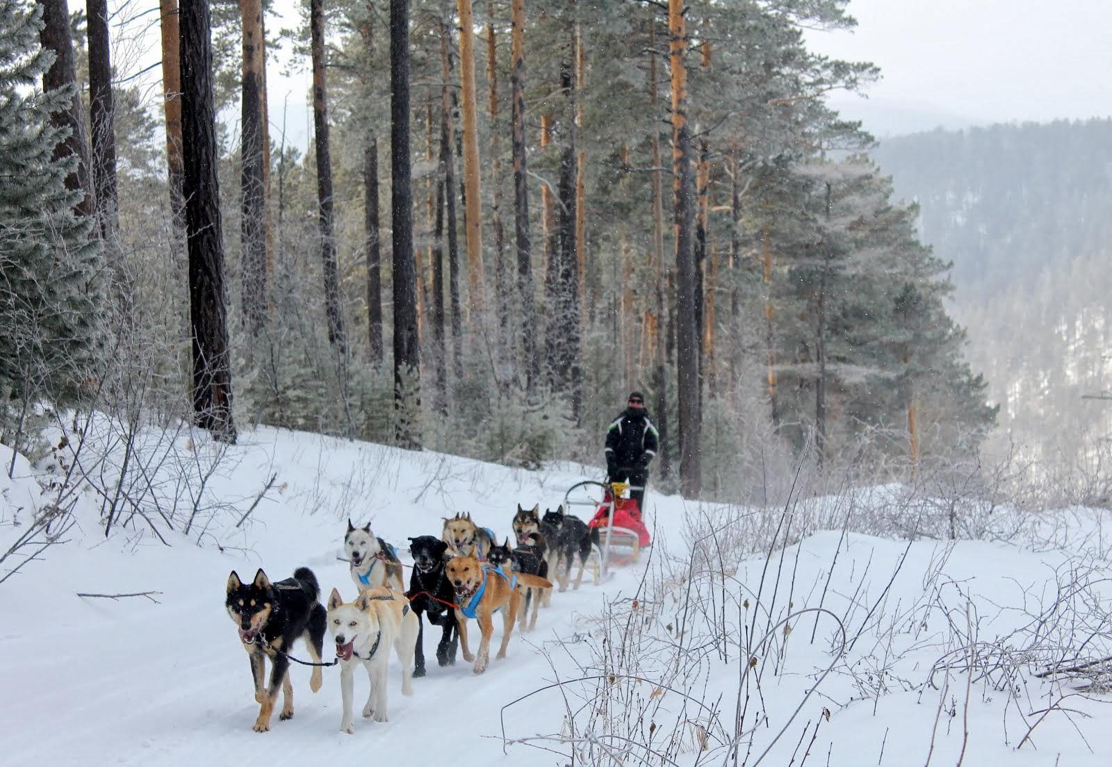на перевале Черный... идем в Большие Коты холостым ходом... февраль 2014