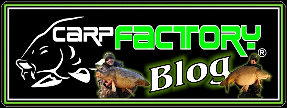 CARPFACTORY blog