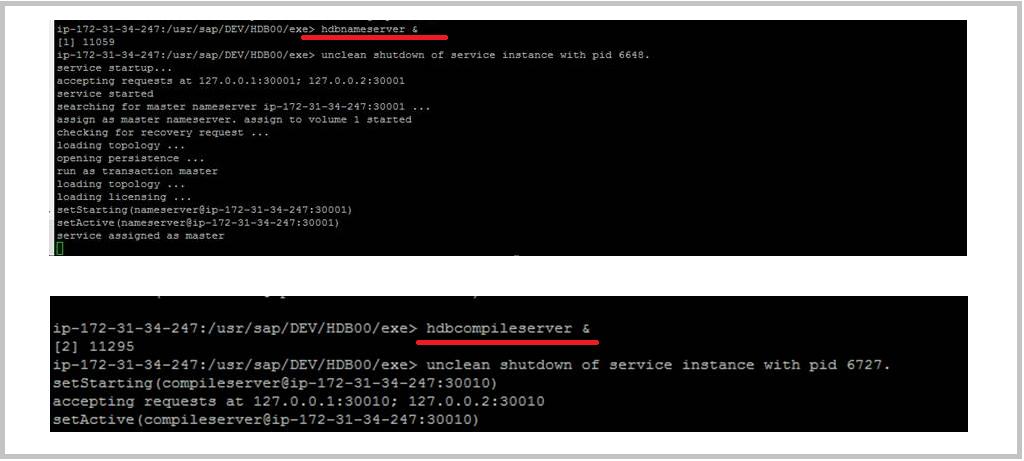 cmd.exe change user password