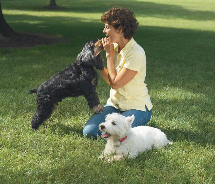 People Make Mistake Of Treating Dogs Like People