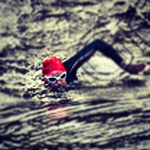 10km swim