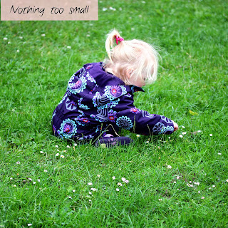 Toddler sitting on grass looking at daisies