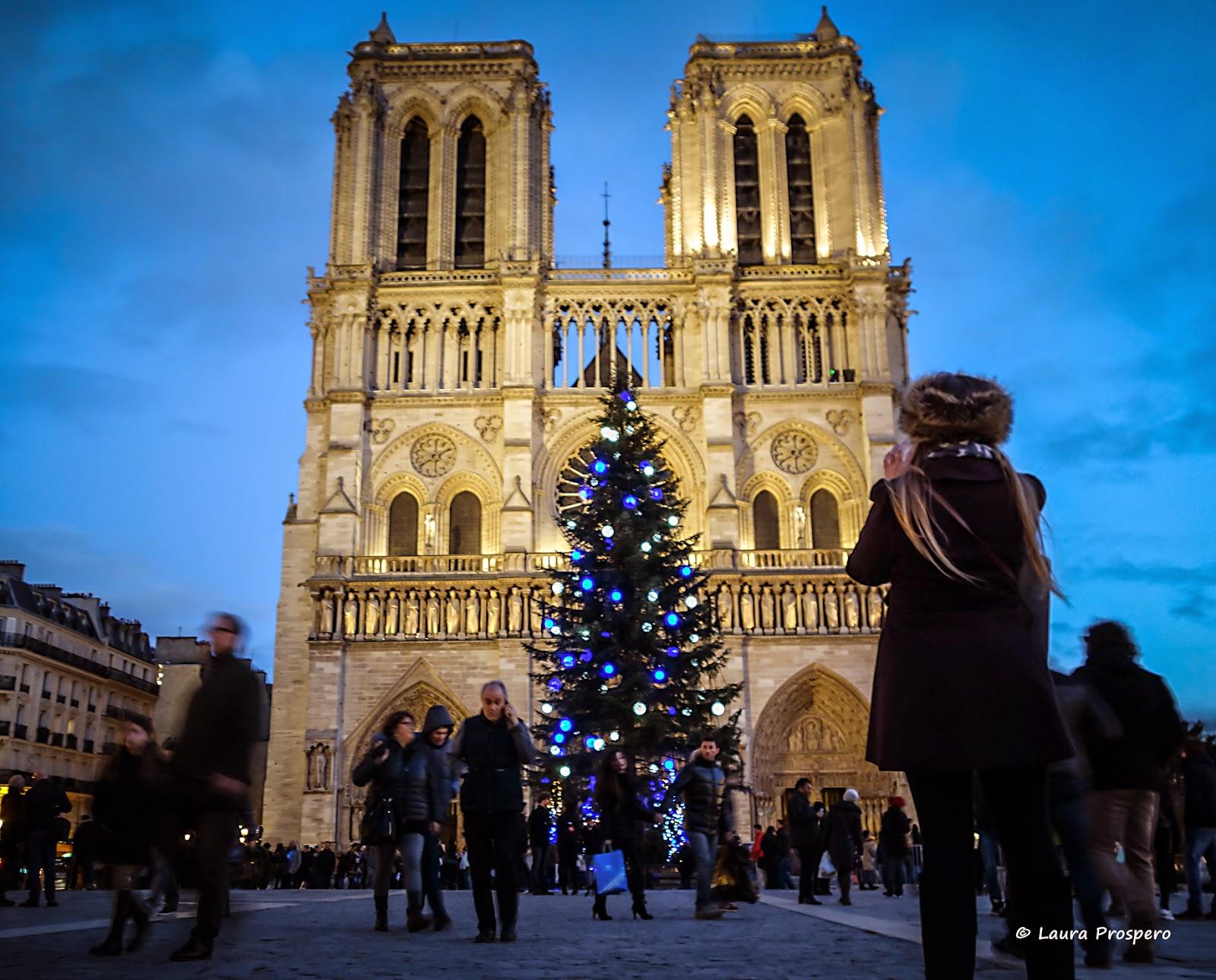 Notre-Dame - Noël 2014 © Laura Prospero