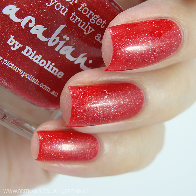 Picture Polish Arabian