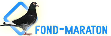 FOND MARATON