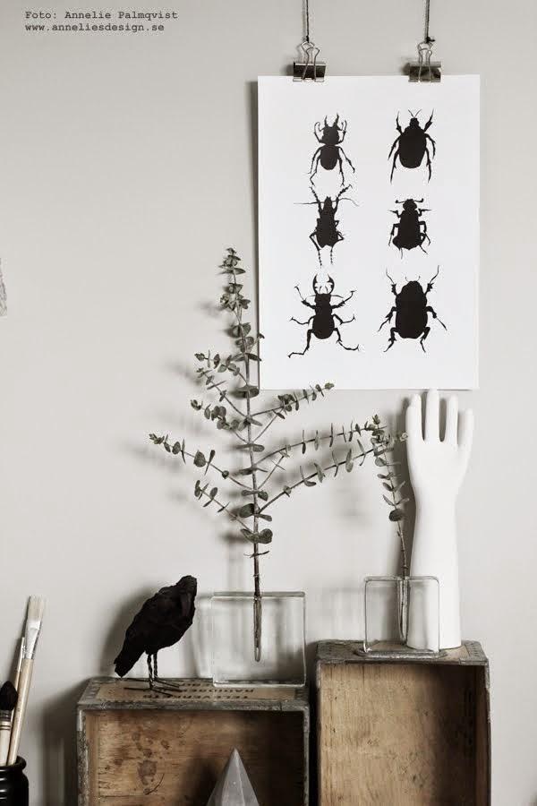 """Konsttrycket """"Skalbaggar"""""""