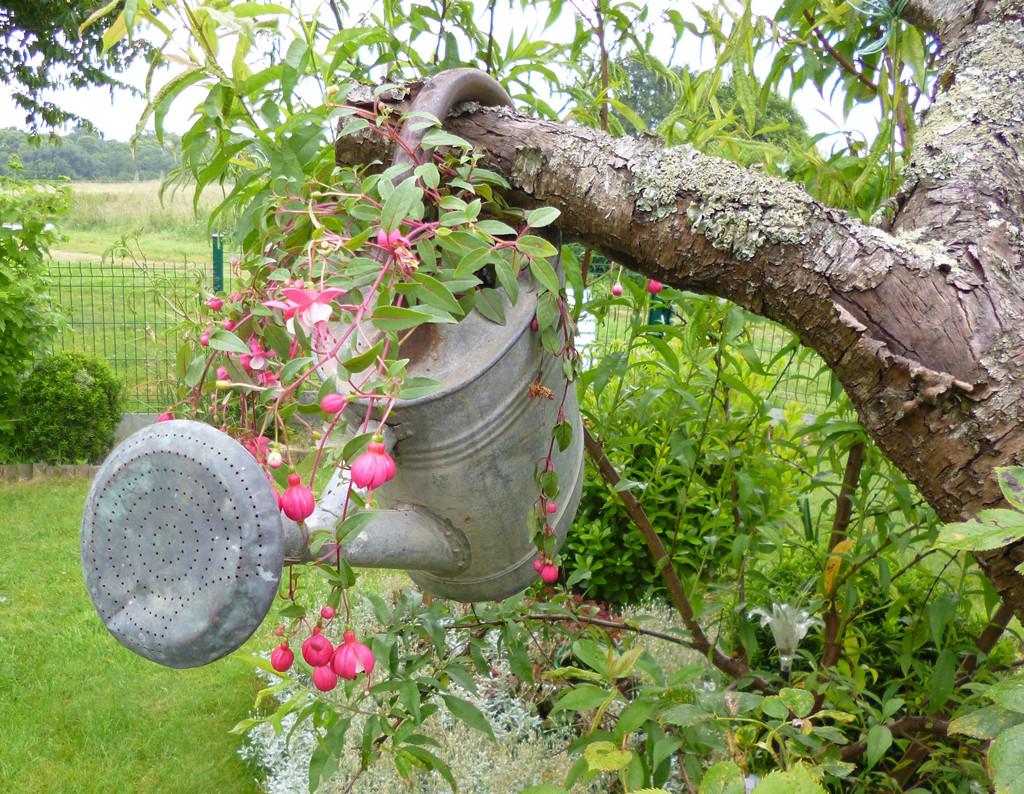 Je m 39 clate avec mes 10 doigts un vieil arrosoir pour for Comment decorer mon jardin