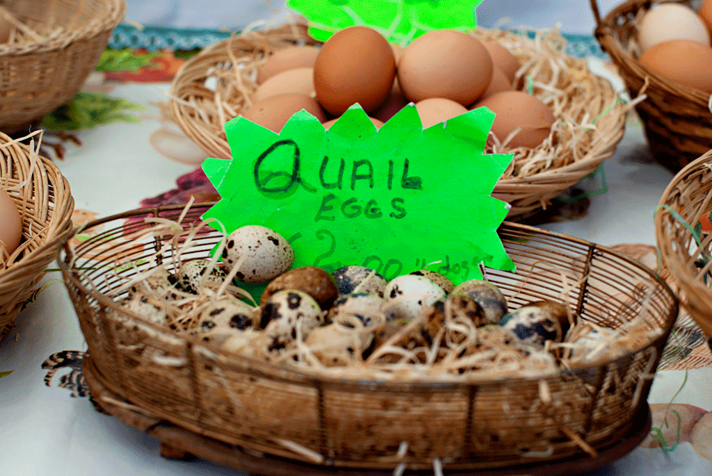 quail eggs; Irish food