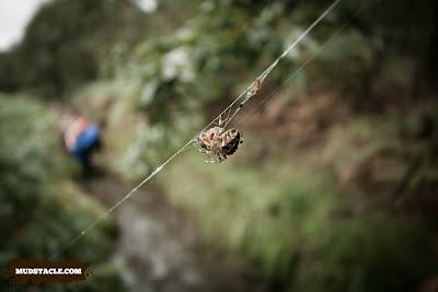 Spider at Demon Run