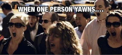 when one person yawns !