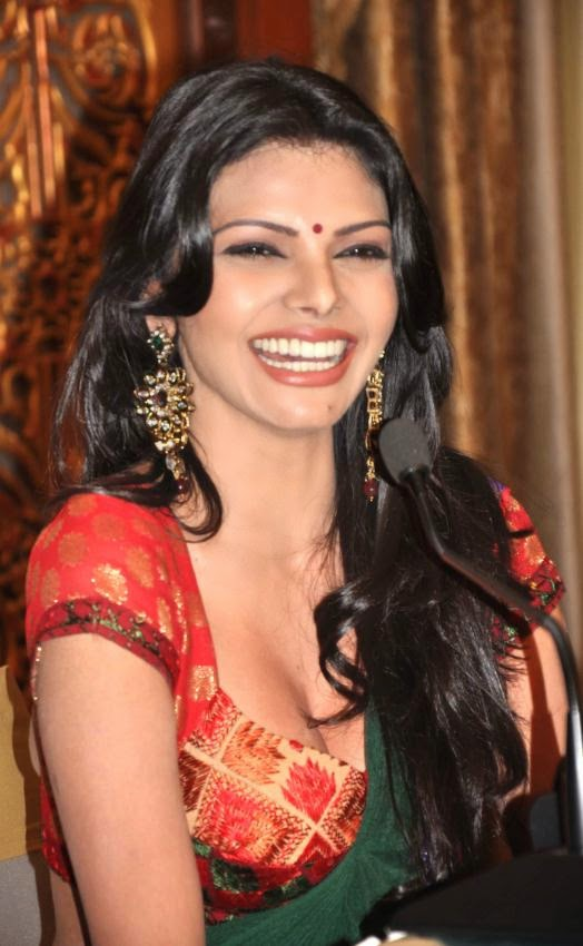 Sherlyn Chopra kamasutra film actress hot pics in saree hot navel exposed in saree