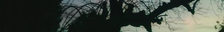 NAS LIVRARIAS EM 2018