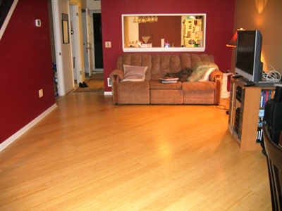 Bamboo Floors6