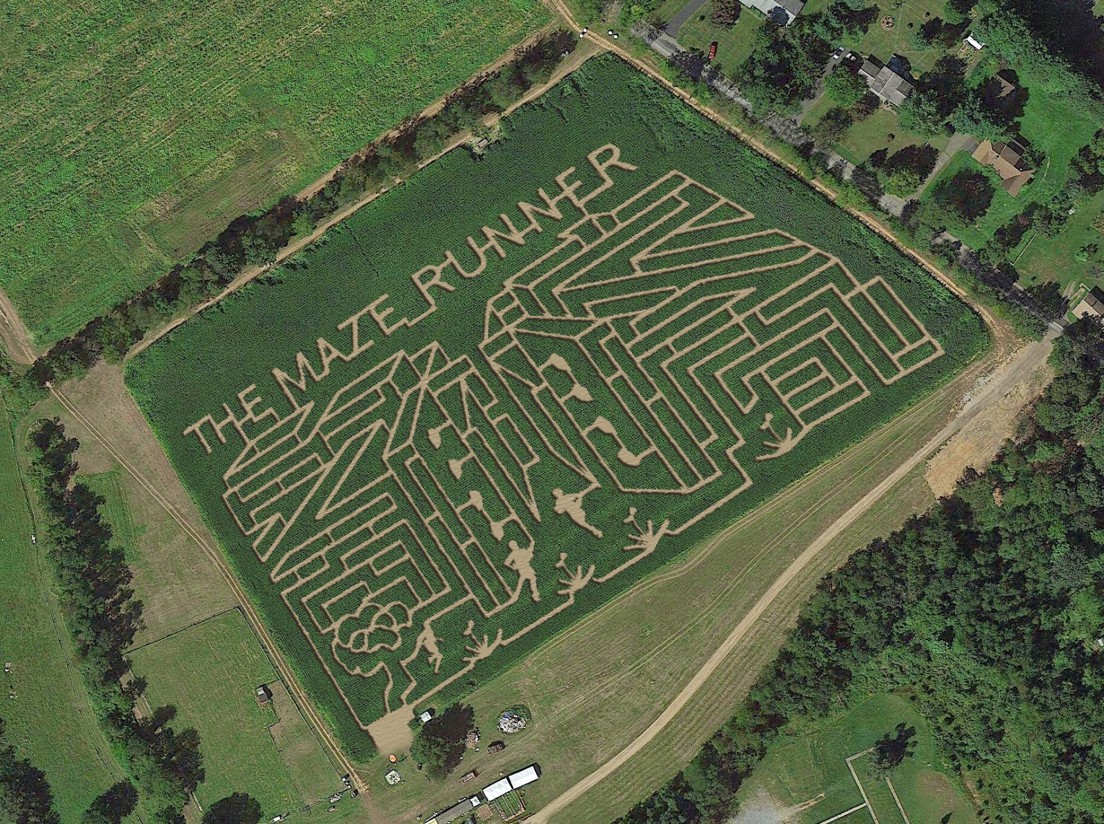 The Maze Runner Blog: Horse Sleigh Farm creates Maze