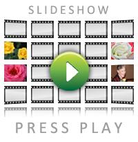 Award Winners Slideshow