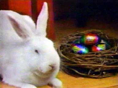 cadbury-bunny.jpg
