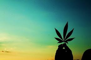 legalizenla