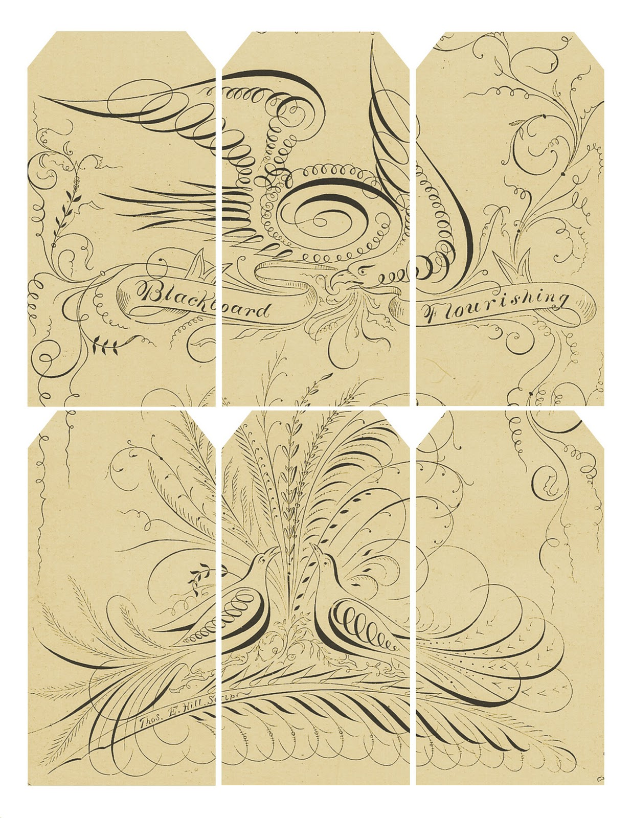 Vintage Wedding Gift Tag Templates Free : Lilac & Lavender: Neutral vintage gift tags