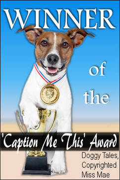 Doggy Tales Caption Award