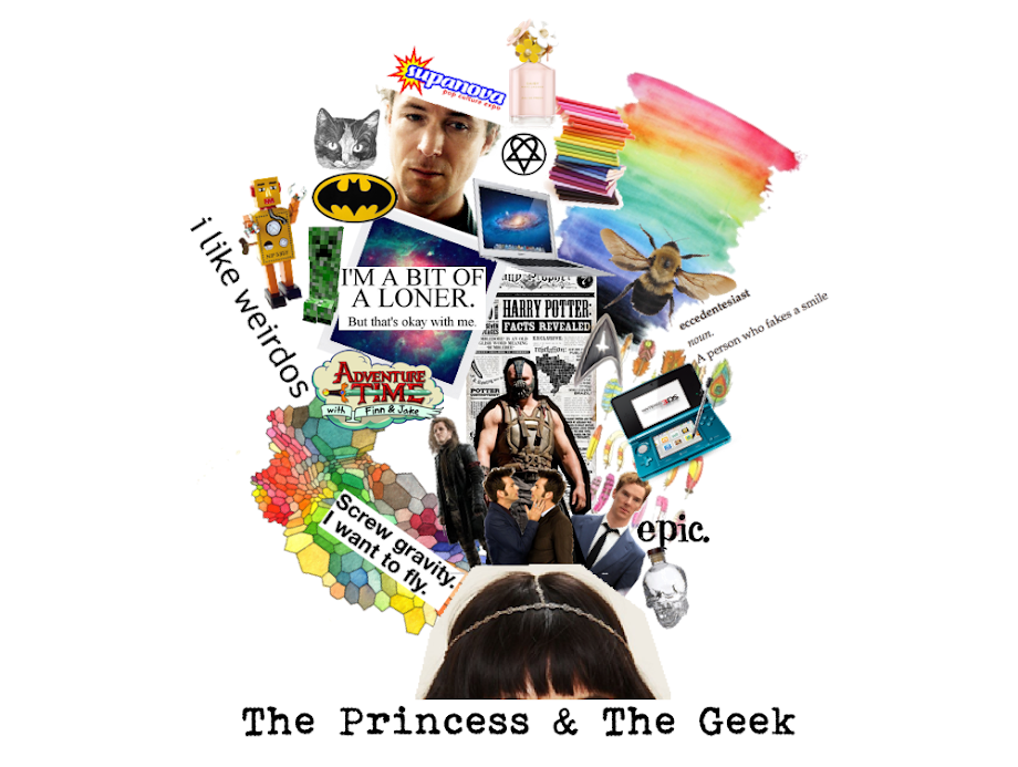 The Princess &amp; The Geek
