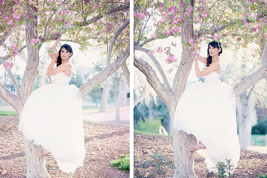 spring wedding, spring wedding photos, cherry blossom, albuquerque cherry blossoms, albuquerque wedding photographers, wedding photographers in albuquerque, bridal portrait sessions, Maura Jane Photography, UNM weddings, UNM chapel wedding