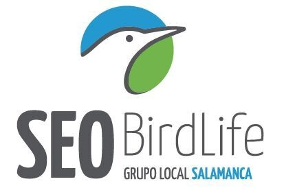 Grupo Local SEO-SALAMANCA