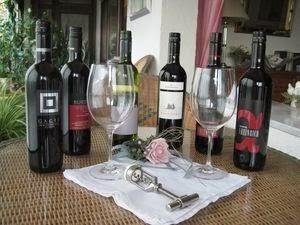 Vinexus- Das Burgenland in Rot: Typische Blaufränkisch- Weine im Paket