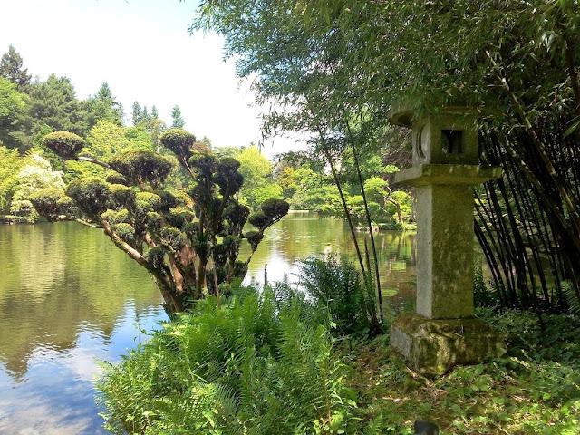 Parc oriental de Maulévrier From the avenue