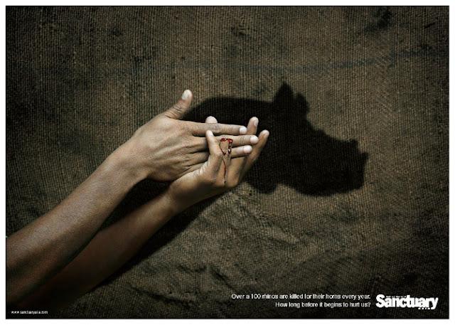 Green Pear Diaries, publicidad, advertising, Sanctuary, cacería de rinocerontes