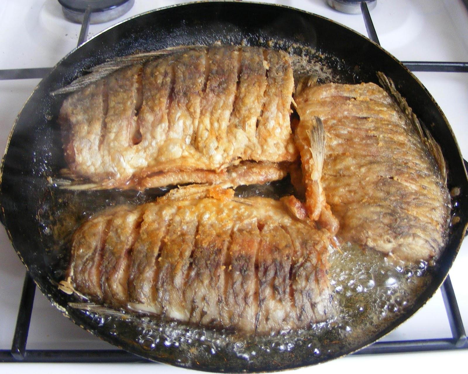 peste prajit, caras prajit, peste caras prajit, peste prajit cu mujdei de usturoi, peste caras prajit, retete si preparate culinare peste caras prajit cu mujdei de usturoi, retete cu peste, reteta cu peste, retete de mancare,