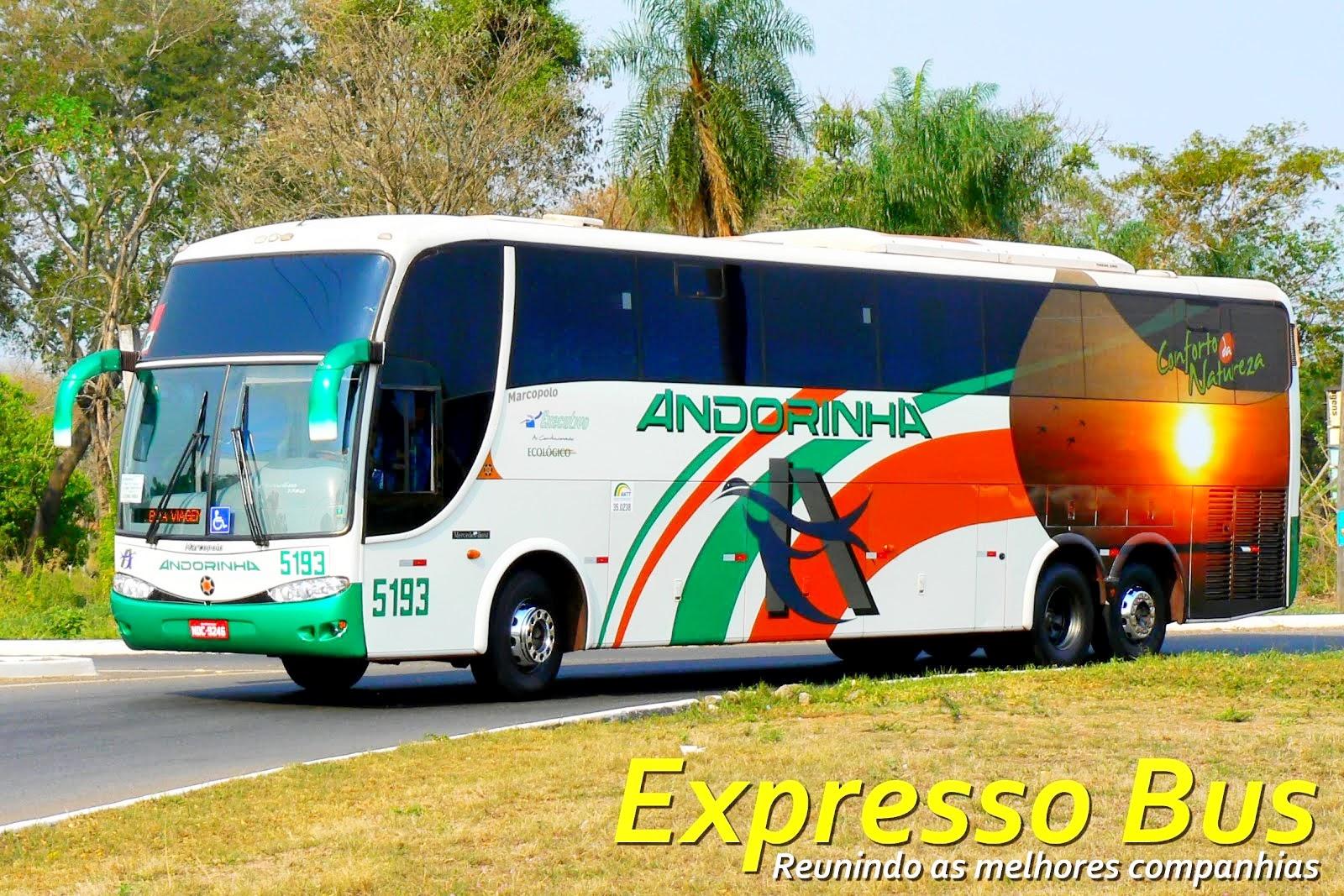 Expresso Bus