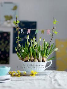 Bjud in våren! / Allas nr 8