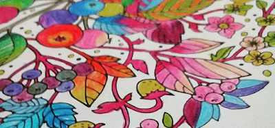 Awalnya Sih Tidak Tertarik Sama Sekali Dengan Adult Coloring Book Tapi Istri Akhirnya Pamer Juga Hasil Karyanya Pada Saya Ternyata Lucu