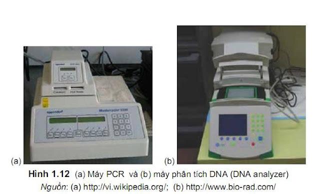 Máy phân tích PCR