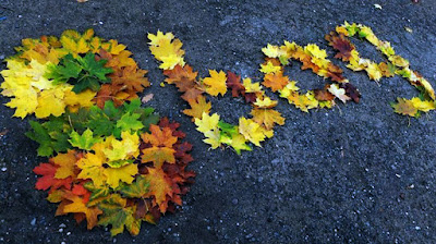 Fallen, colorful and uniqe leaves - 8bag