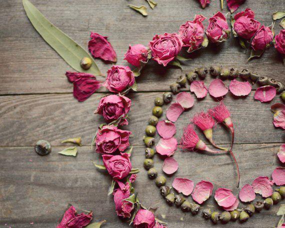 The roses circle