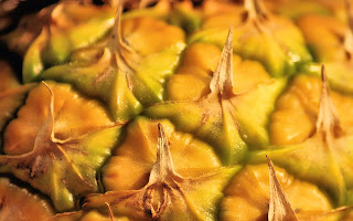 theRVGourmet, What's so Good About Pineapple-Flowers