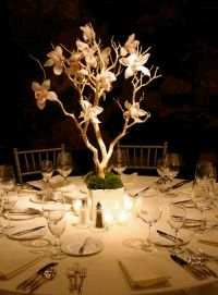 Wedding Decorations, Centerpieces and Arrangements with Orchids