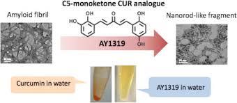 水溶性の「C5 クルクミン」 (AY1319)