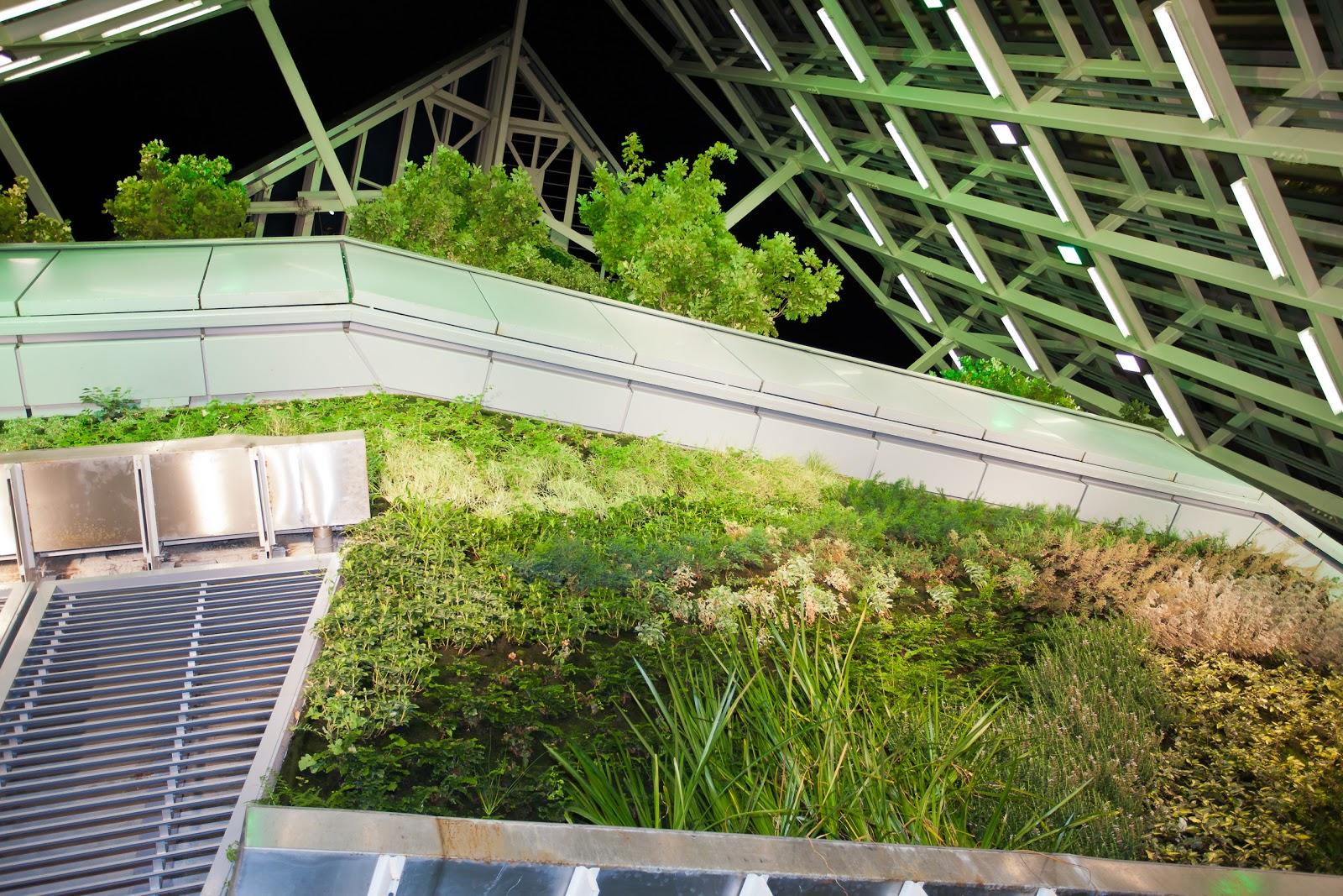 Nuevo blog de jardines verticales de isla verde jardines for Verde vertical jardines verticales