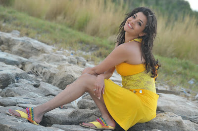 South Top Actress Kajal Agarwal Spicy Photos